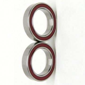Bearing Steel Stainless Steel Miniature Deep Groove Ball Bearing 681 681X 681X-Zz 682 682X 682X-Zz 618/3 683zz 618/4 628/4zz 684zz 618/5 618/5-22 628/5-Zz 685zz
